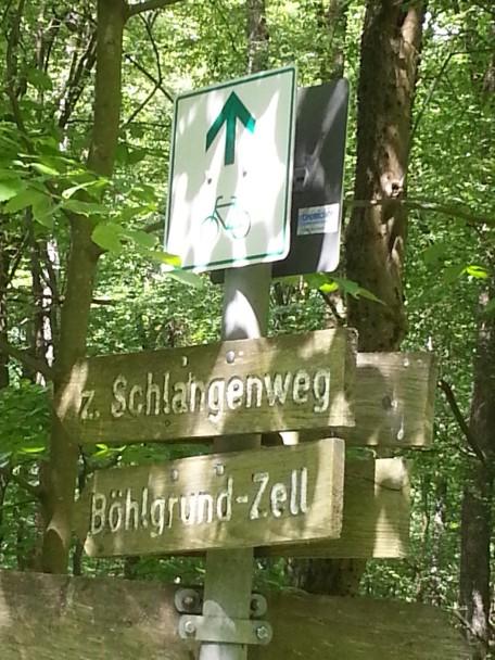 2017-5-25-Steigerwald (5)